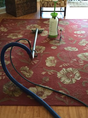 area_rug_cleaning3